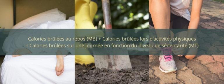 On calcule notre métabolisme total en additionnant les calories que nous brûlons au repos et celles que l'on brûle lors de nos activités physiques.