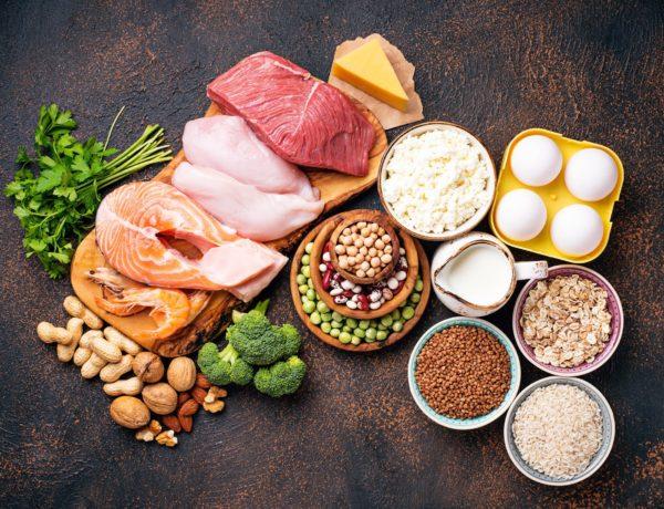 Les protéines, pourquoi sont-elles importantes ?